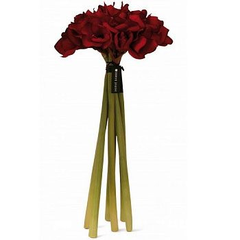 Diffuser Bouquet Amaryllis Red 68sm Herve Gambs Paris