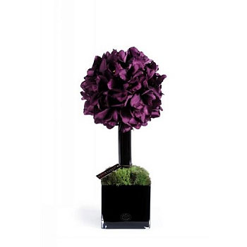 Diffuser 40 Purple Orchids 25*55 см Herve Gambs Paris