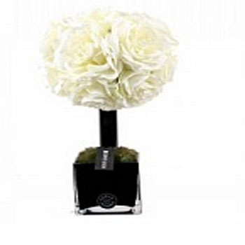 Diffuser Tree 50 sm White Rose cube noir Herve Gambs Paris