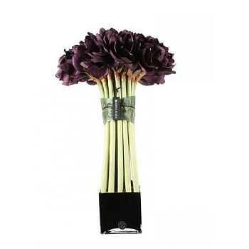 Diffuser Big Plum Bouquet Amaryllis Cube Noir Herve Gambs Paris